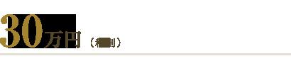 30万円(税別)